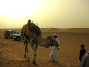 DubaiDesert